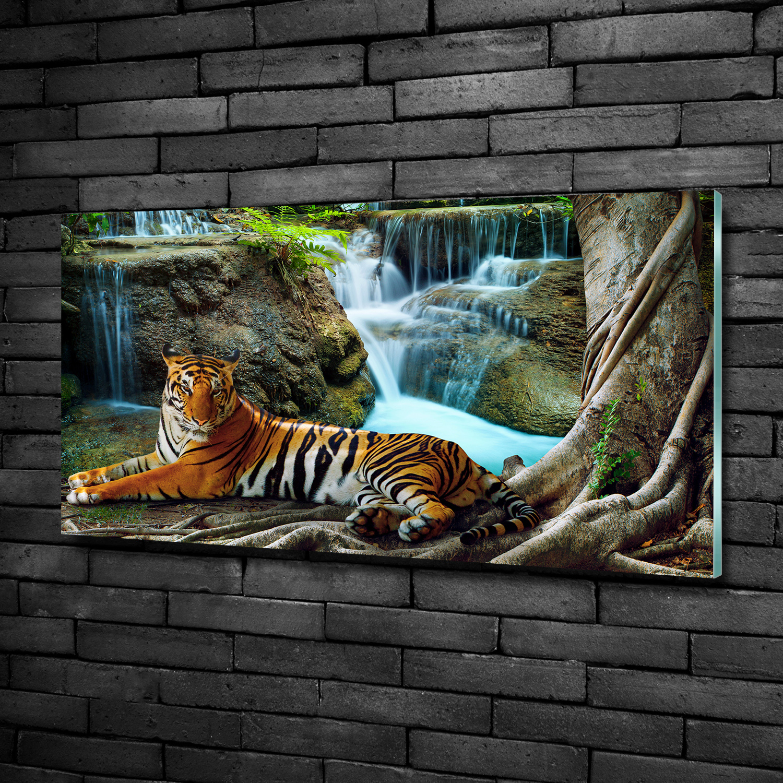 Wandbild aus Plexiglas® Druck auf Acryl 125x50 Tiere Tiger Wasserfall