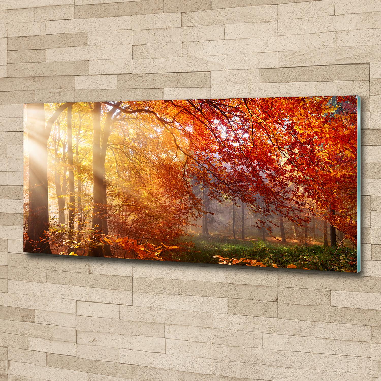 glas bild wandbilder druck auf glas 125x50 deko. Black Bedroom Furniture Sets. Home Design Ideas