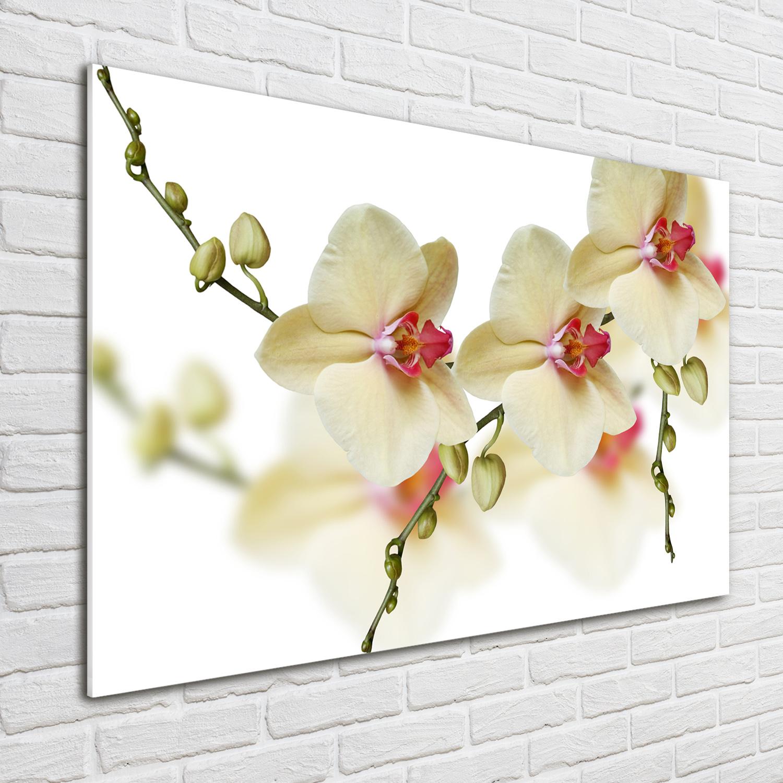 glas bild wandbilder druck auf glas 100x70 deko blumen. Black Bedroom Furniture Sets. Home Design Ideas