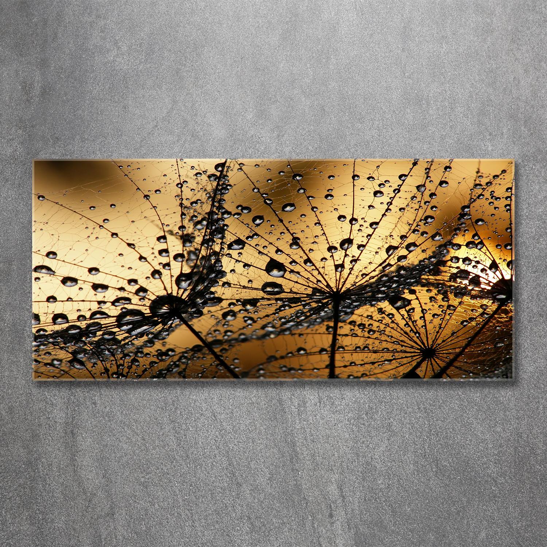 Glasbilder Wandbild Druck auf Glas 120x60 Pusteblume Pflanzen