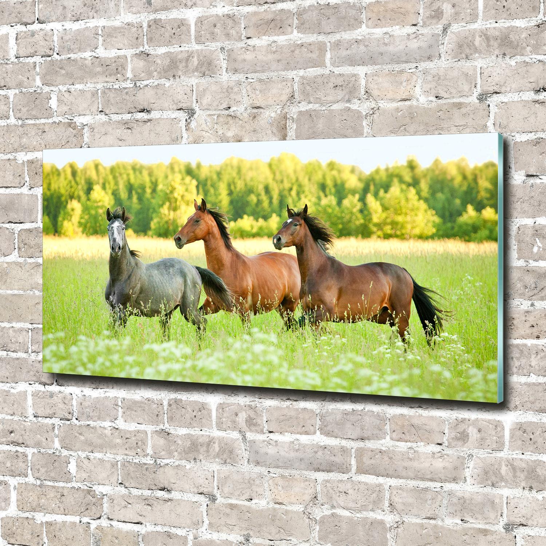 Leinwandbild Kunst-Druck 140x70 Bilder Tiere Pferde im Galopp