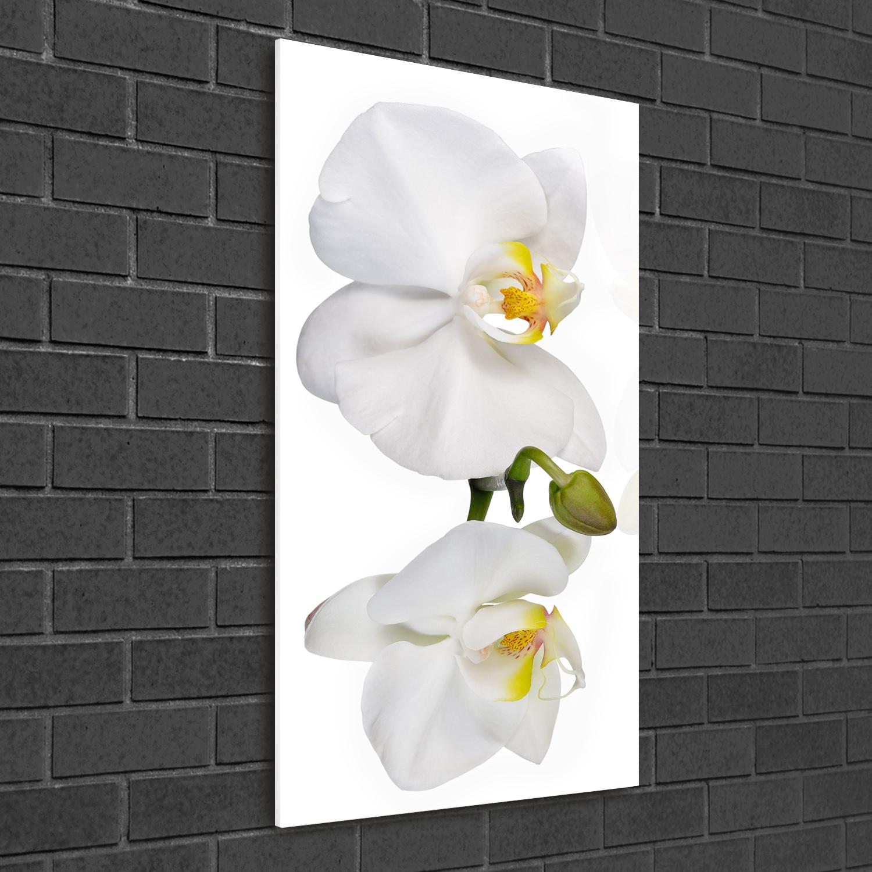 Wandbild Kunst-Druck auf Hart-Glas hochkant 50x100 Weiße Orchidee