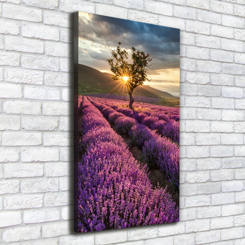 Leinwand-Bild Kunstdruck Hochformat 50x125 Bilder Lavendelfeld