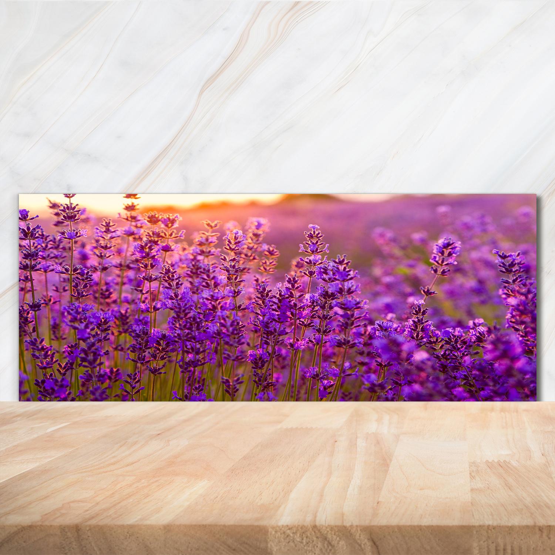 Küchenrückwand Spritzschutz aus Glas 125x50 Deko Blumen /& Pflanzen Lavendelfeld