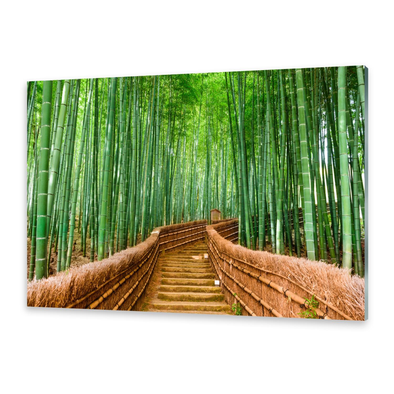 glasbilder wandbild druck auf glas bambuswald ebay. Black Bedroom Furniture Sets. Home Design Ideas