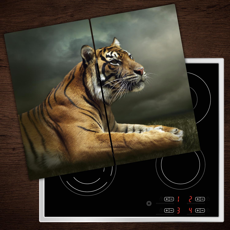 Ceranfeldabdeckung Herdabdeckplatten Spritzschutz Glas Tiere 2x30x52 cm