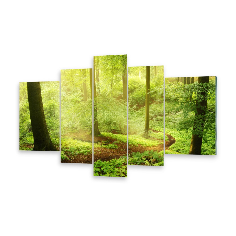 Acrylglasbilder Wandbild aus Plexiglas® Bild Nebelwald