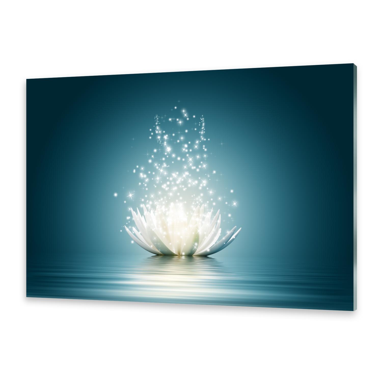 glasbilder wandbild druck auf glas magische lotusbl te ebay. Black Bedroom Furniture Sets. Home Design Ideas